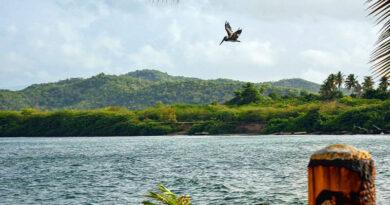 Пуэрто-Рико теперь открыт — что нужно знать путешественникам