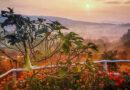 Таиланд вводит новую долгосрочную туристическую визу — но есть условия