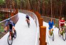 Отмеченная наградами бельгийская велосипедная трасса поднимает велосипедистов над лесом приключений