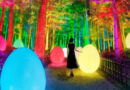 Древний японский сад превращается в живое искусство с калейдоскопической выставкой
