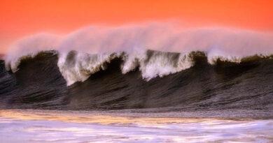 6 Захватывающих дух пляжей Сан-Франциско
